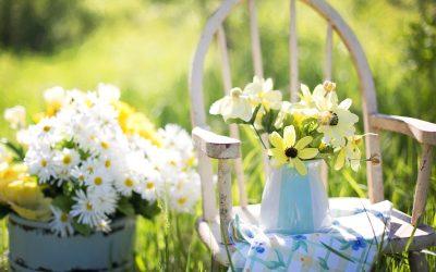 Create a Healing Garden for Overcoming Anxiety
